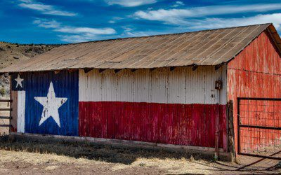 PILF Intervenes to Protect Texas' Election Integrity Law